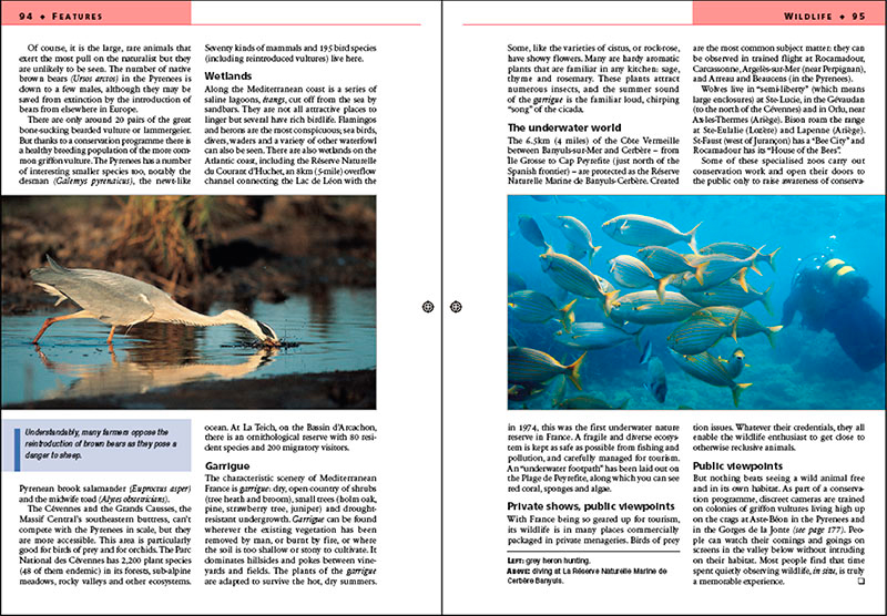 automatización publicaciones nousmedis ePUB inDesign catálogos libro electrónico CeGe editorial